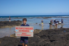March 13, 2013 was a great day for in-water honu (Hawaiian green sea turtle) monitoring in Kona, Hawaii.