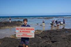 March 13, 2013 was a great day for in-water honu (Hawaiian green sea turtle) monitoring in Kona, Hawaii.