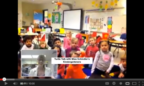 A screenshot of my Turtle Talk with Erin Schindler's Kindergarteners at Roswell North Elementary (Atlanta, GA).