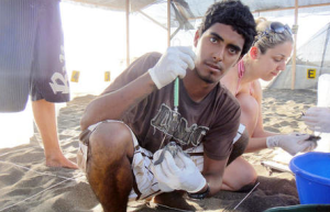 Sea turtle conservationist Jairo Mora Sandoval working at a hatchery in Moín. Photo courtesy of Wikimedia Commons.